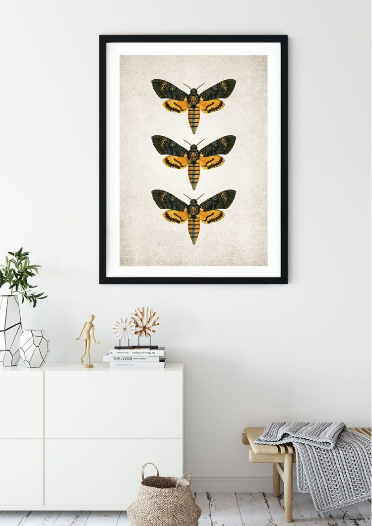 Death's Head Moth Giclee Print