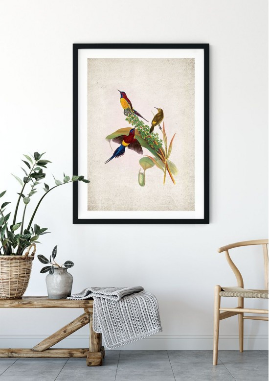 Birds of Asia Giclee Print