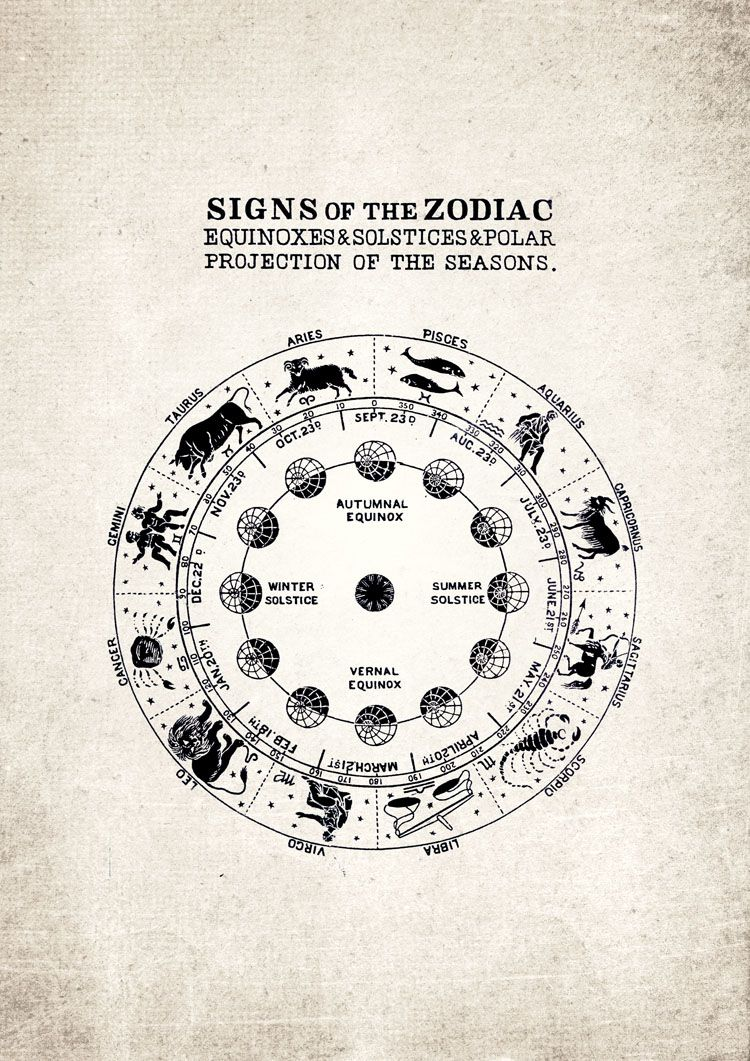 Signs of the Zodiac Star Signs Giclee Print