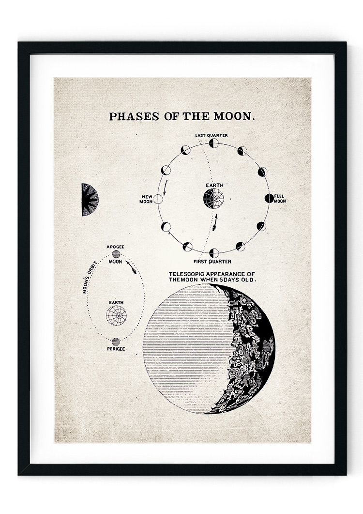 Phases of the Moon Giclee Print
