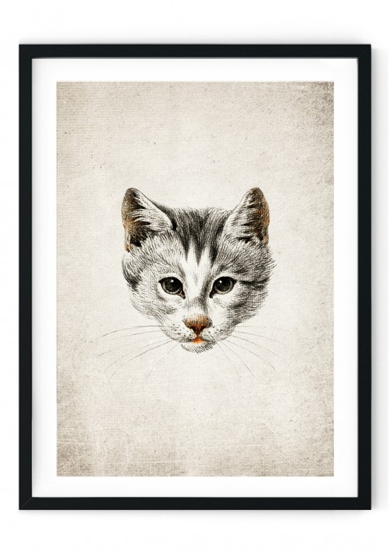 Cat Face Giclee Print