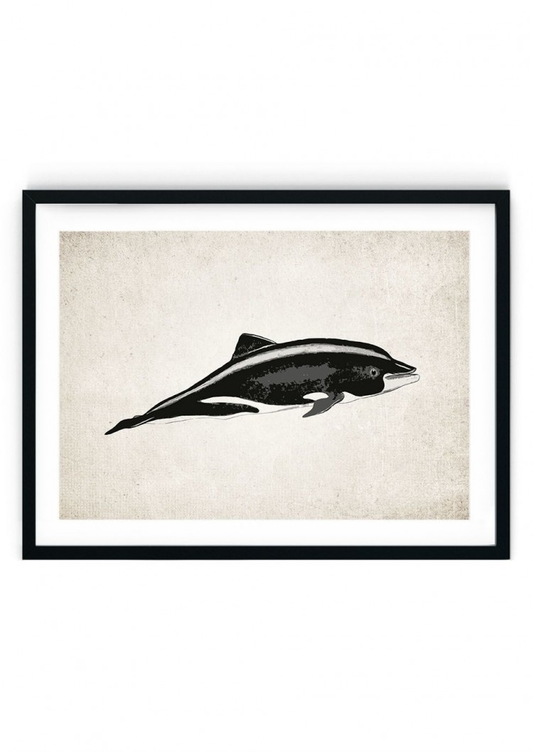 Dolphin #3 Giclee Print